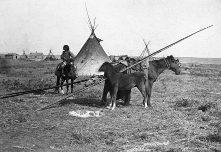 First Nations camp near first Hudson's Bay Company store at Fort Calgary, Alberta. (A. Ross, 1886)